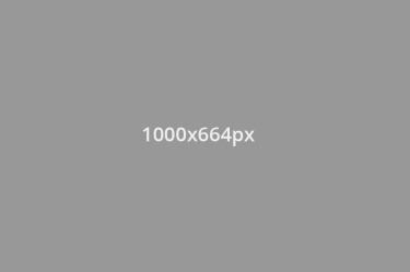 1000x664