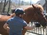 Cu-caii-la-Ghiocelul-2718